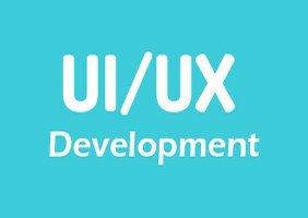 UI/UX Development Online Training in USA